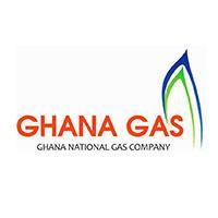Ghana Energy Summit 2019 Partner